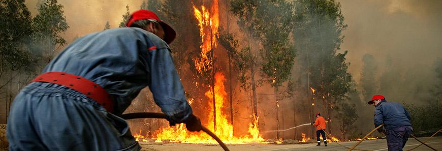 Firefighter Equipment & Fire Gear