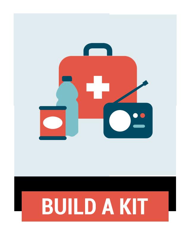 Iridium GO Build a Kit