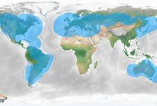 Globalstar Coverage Map - Apollo Satellite