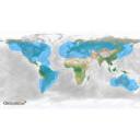Globalstar-CoverageMap_ApolloSatellite.jpg